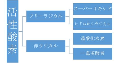 活性酸素表